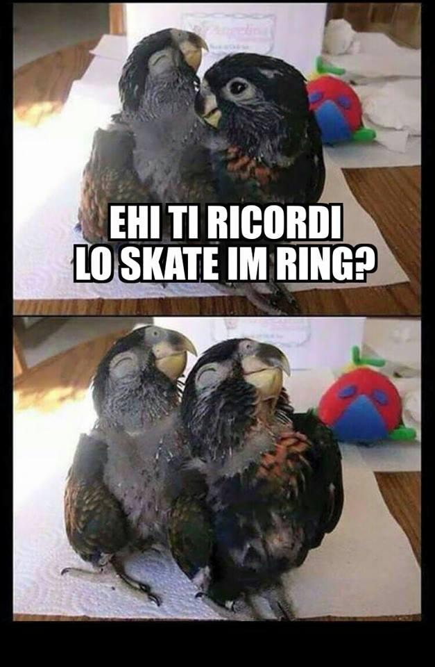 meme_skir